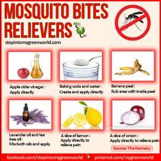 mosquito bite stop itch, heal a mosquito bite, bite reliev, tea tree oil, remedi, health, mosquito spray, mosquito bites stop itching, mosquitoes