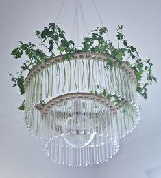 maria s.c. lamp.