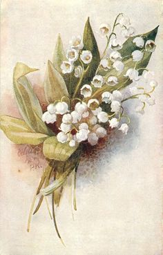 Lily of the valley - Vintage postcard by P.K. (A. Price King) - 1918