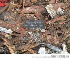 This picture was taken in the tornado rubble in Oklahoma…
