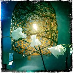 Bird's nest by Ay Illuminate