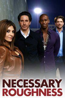 Necessary Roughness tv show