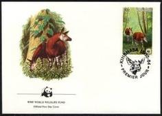 The Okapi Postcard okapi postcard