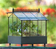 Terrarium -- terrariums include the traditionally styled Wardian case or