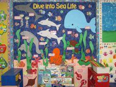 ocean unit bulletin board