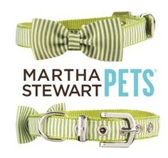 Your four-legged buddy will be the highlight of the #StPatricksDay street parade with this fun, functional, and absolutely adorable green #MarthaStewartPets collar. Available at #PetSmart.