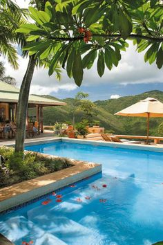Pools in Tortola Island of British Virgin Islands, Caribbean