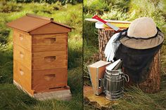 The Backyard Beehive. ......dad's hobby for years!