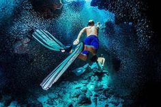 #Silverside #Fish #Devilsgrotto #Cave #GeorgeTown #Cayman © Predrag Vuckovic