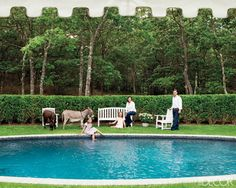 At home in the Hamptons