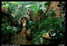 I am getting a craving again for New Orleans.. love the garden courtyards, the food and music.