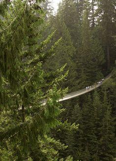 The Capilano Suspension Bridge in Canada.