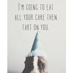 Birthday Farter funny pitbull birthday card by PibbleSlobberStudio, $3.99
