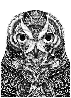 Owl Part 5 by Iain Macarthur, via Behance #drawing #illustration #owl