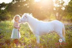 Unicorn Sessions...