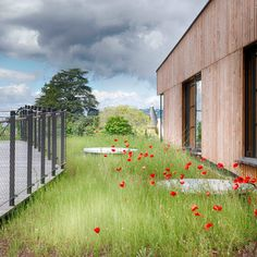 Green roof / nature