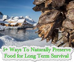 5+ Ways To Naturally Preserve Food for Long Term Survival