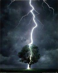The wonder of nature - lightning strikes a tree
