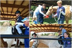 Hippotherapy treatment helps children with special needs
