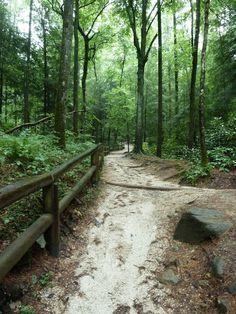Natural Bridge State Park Kentucky