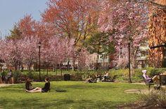 Campus Life | Drexel University