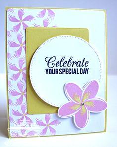 Tropical Sensations; Birthday Greetings; Tropical Sensations Die-namics; Blueprints 5 Die-namics; Pierced Circle STAX Die-namics - Julie Dinn