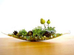 Pretty Little Lichen Vessel Terrarium by TinyTerrains on Etsy, $28.00