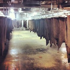 SB Foot Tanning plant. This place is where the leather will dry for a little while, what a beautiful place with nice people! #redwing #redwings #redwingshoes #boots #amsterdam #shoes #sbfoot #leather #tannery