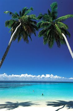Your standard beach view in the Dominican Republic. #paradise #travel THIS IS PERFECT SINCE IM GOING IN 2 MONTHS!