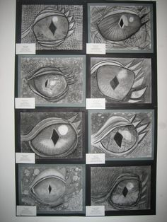 5th grade charcoal dragon eyes.  value and volume