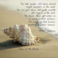 The tide recedes....