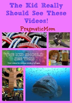 Fun, educational and inspiring videos for kids curated by my son from The Kid Should See This :: PragmaticMom