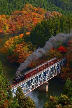 Colored leaves and Steam, JR Tadami-Line, Fukushima, Japan