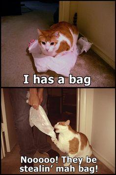 they be stealin mah bag!