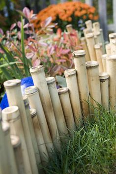 Bamboo garden edging - I have bamboo and I have beds that need edging :)