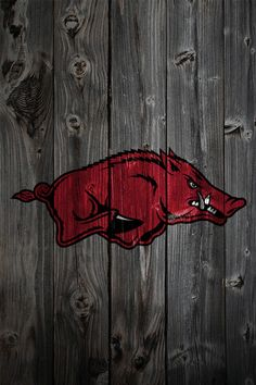 Arkansas Razorbacks image