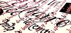 """Extrait de """"Zadig"""" de Voltaire. Calligraphies à la plume, encre Café."""