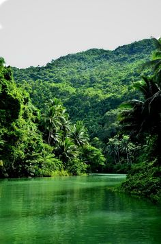 I don't know where this is, but it looks very much like where I grew up in the jungles of Panama......Love it!