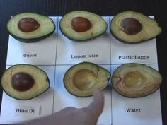 How to Keep Avocados From Turning Brown - YouTube