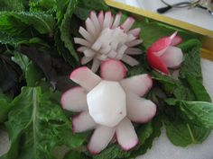 Radishes for garnish
