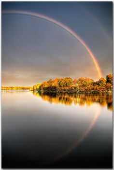 Rainbows have reflections