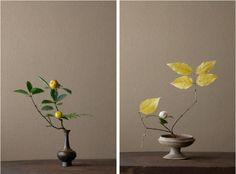 harvest yellows by Toshiro Kawase: Gardenista