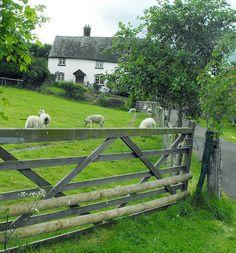 Wales...