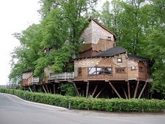 treehouse living, garden trees, dream, architectur, tree housd, garden treehous, tree houses, alnwick gardens, amaz treehous
