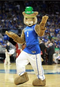 Sup, Indiana? You want some? The Kentucky Wildcats are about to show you how it's done!