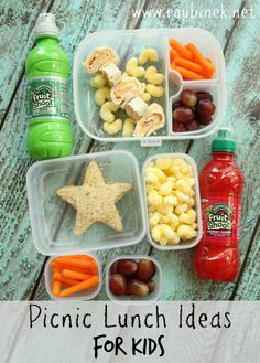 Picnic Lunch Ideas for Kids