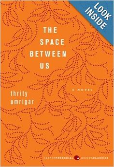 The Space Between Us: A Novel: Thrity Umrigar