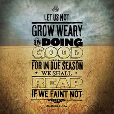 Let us not grow weary in doing good, for in due season, we shall reap if we faint not. -- Galatians 6:9