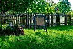 Perfect spot to read.  #garden