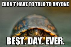Life as an introvert.